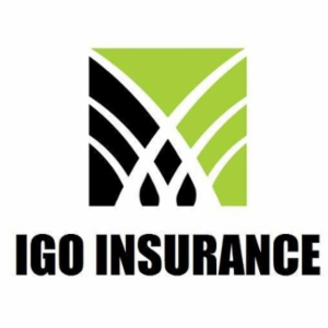 IGO Insurance Agency, Inc.